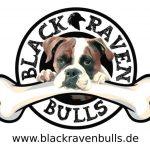 blackravenbulls